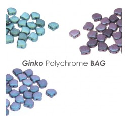 Ginko Polichrome BAG