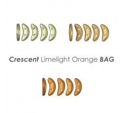 Crescent Metallic Gold BAG