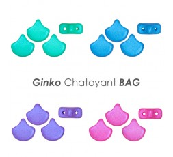 Ginko Bondeli Mix BAG