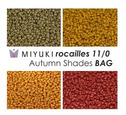 Miyuki Rocailles 11/0 Autumn Shades BAG