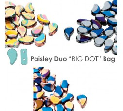 Paisley Duo DOT Bag