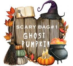 Scary BAG Numero 1 - Ghost Pumpkin
